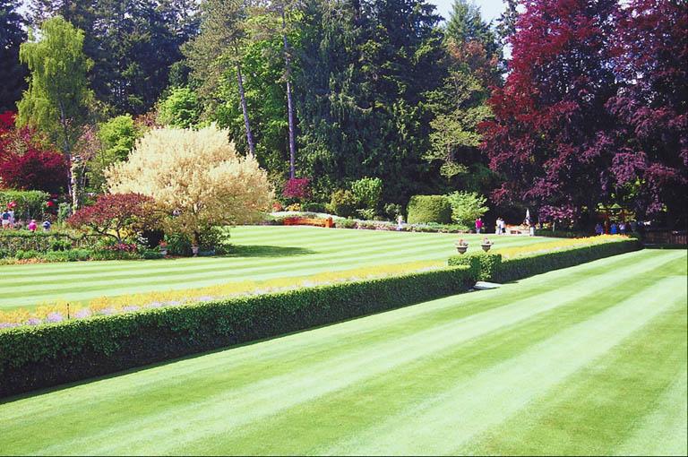 Lawn Maintenance Business Plan